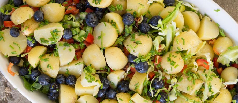 Kartoffelsalat med blåbær og spidskål